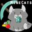 Icon of Minecraft Server MineCats