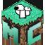 Icon of Minecraft Server Minecochia